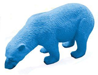 Eraser-Bear